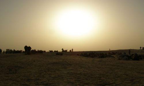 TUNEZJA / Tunezja / Sahara / Karawana