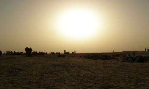 Zdj�cie TUNEZJA / Tunezja / Sahara / Karawana