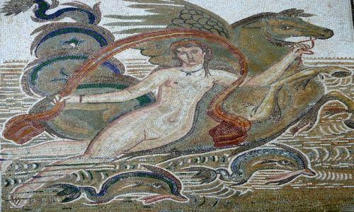 Zdjęcie TUNEZJA / El Jem / muzeum / Mozaika 2