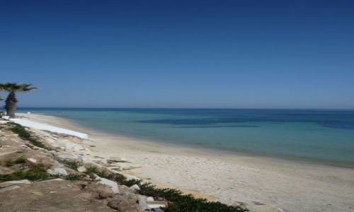 Zdjecie TUNEZJA / Hammamet / Hammamet / plaża