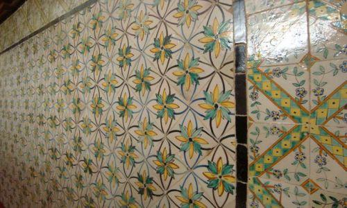Zdjecie TUNEZJA / Tunis / Muzeum mozaik / Ściana pełma kwiatów