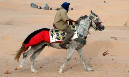 TUNEZJA / Północna Sahara / Pustynia k. Douz / Tuareg na arabie