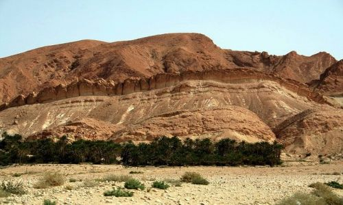 TUNEZJA / Północna Sahara / Chebika / Góra z grzbietem krokodyla