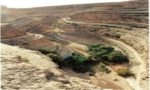 Zdjęcie TUNEZJA / brak / Djerba / kanion