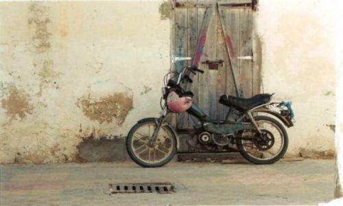 Zdjęcie TUNEZJA / brak / Djerba / Rumak3