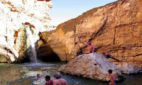 Zdjęcie TUNEZJA / SAHARA / TAMERZA / Oaza w górach ATLAS