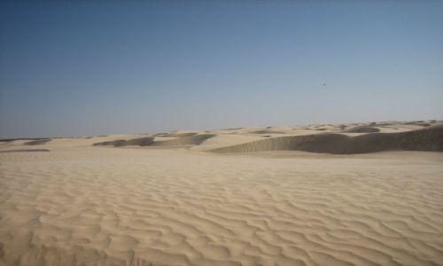 TUNEZJA / Sahara / Douz / Bezkresna wolność
