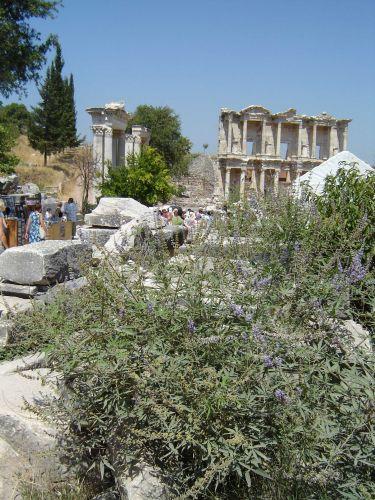 Zdj�cia: Efez, Efez, Biblioteka Paracelsiusa, TURCJA