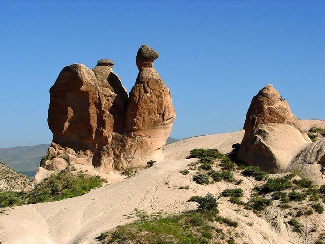 Zdjęcia: Kapadocja, Kapadocja, wielbłąd, TURCJA