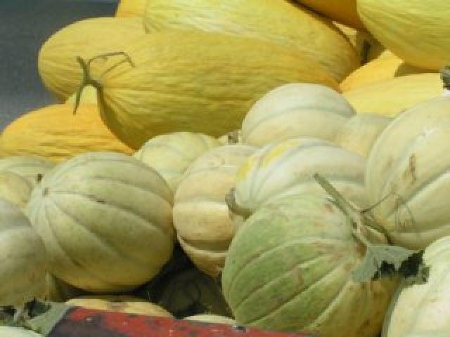 Zdj�cia: Corlu, Tureckie melony, TURCJA