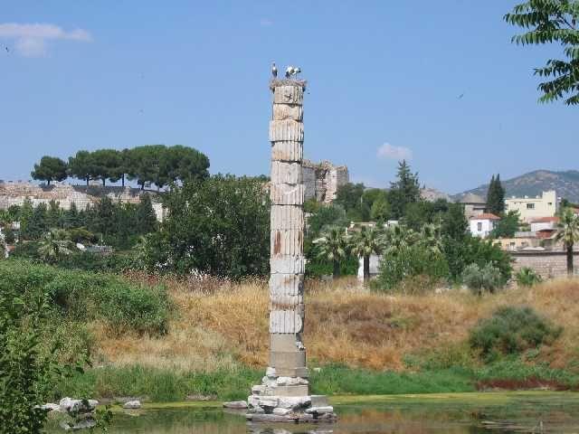 Zdj�cia: Efez, Fragmenty �wi�tyni Artemizy, TURCJA