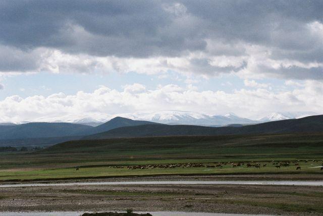 Zdjęcia: Srodkowo wschodnia turcja, Srodkowo wschodnia turcja, Turecki Krajobraz, TURCJA