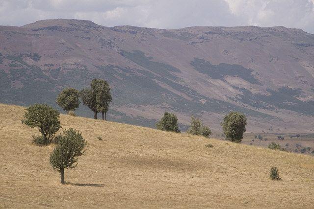 Zdjęcia: gdzieś w Turcji...., Wschodnia Anatolia, w drodze..., TURCJA