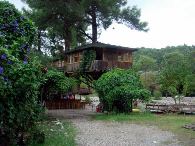 Zdjęcia: saklikkent, Turcja Egejska, domki na drzewach, TURCJA