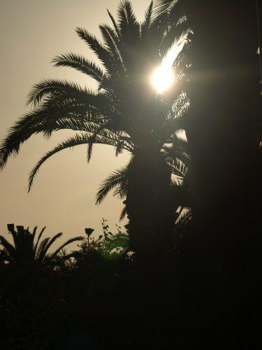Zdj�cia: Alanya, Tureckie uroki, TURCJA
