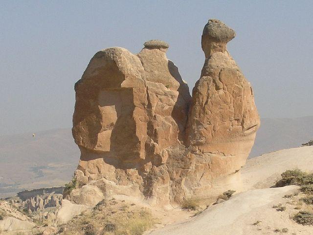 Zdjęcia: kraina wyobraźni, Kapadocja, wielbłąd, TURCJA