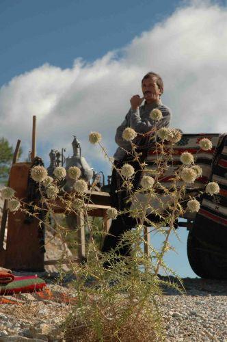 Zdj�cia: w drodze do Pamukkale, anatolia, M�odszy Przedstawiciel Handlowy, TURCJA