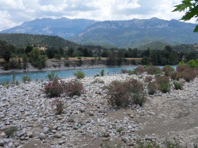Zdjęcia: W górach, okolice Alani, W górach, TURCJA