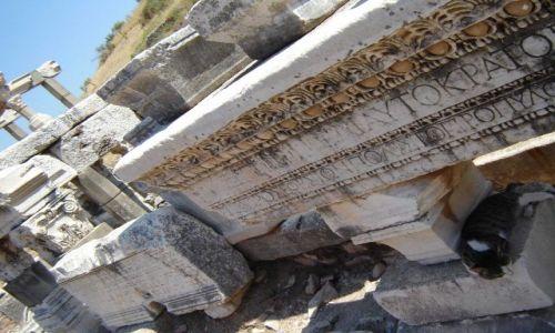 Zdjęcie TURCJA / Efez / Efez / Znajdź kota;)