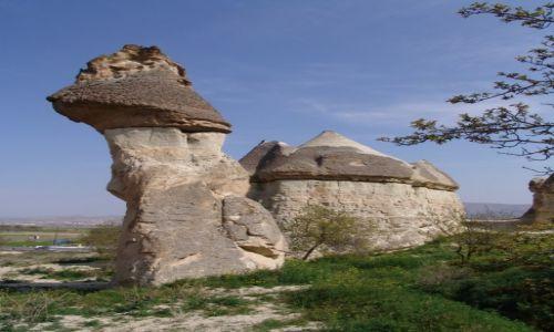 Zdjęcie TURCJA / Kapadocja / Goreme / W świecie skalnych grzybów