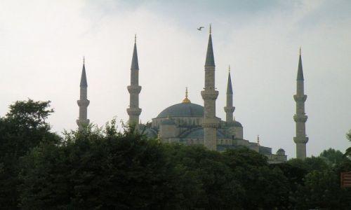 Zdjęcie TURCJA / Stambuł / miasto / Błękitny Meczet