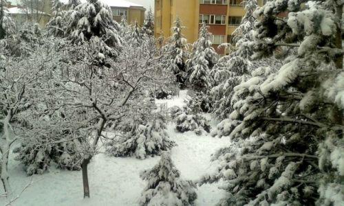 Zdjecie TURCJA / Ankara / Ankara / Zima w Ankarze