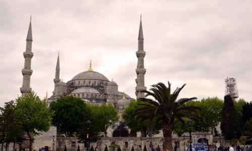 Zdjęcie TURCJA / Marmara / Istambul / Sultanahmed Mosque