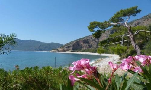 Zdjęcie TURCJA / Oludeniz / Oludeniz / zatoka w Turcji