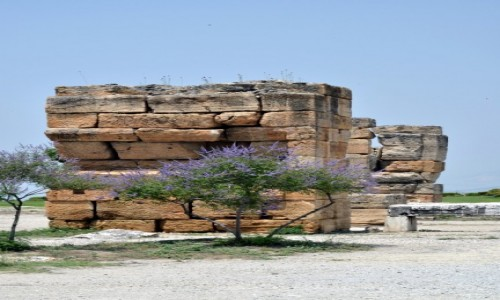 Zdjęcie TURCJA / Pamukkale / Bodrum / Samotna ruina - piękna