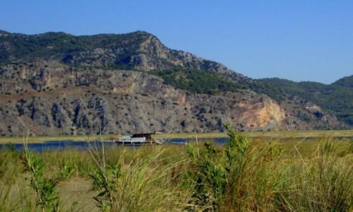 Zdjęcie TURCJA / Turcja Egejska / okolice plaży Iztuzu / Oaza spokoju
