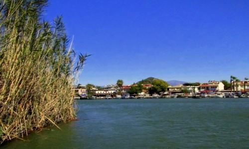 TURCJA / Wybrzeże Egejskie / na rzece Dalyan / Wysokie trzciny