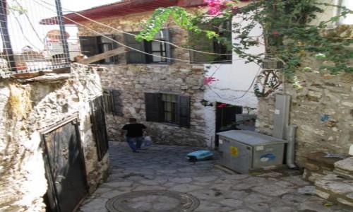 Zdjecie TURCJA / Wybrzeże Egejskie / Marmaris / Koci zamach