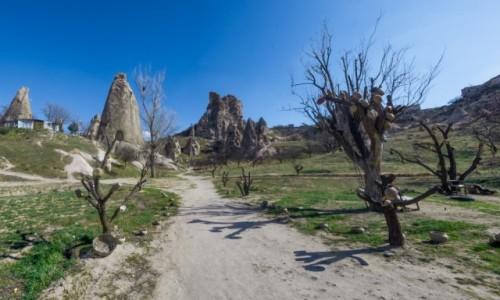 Zdjęcie TURCJA / Anatolia / Goreme / Kapadocja