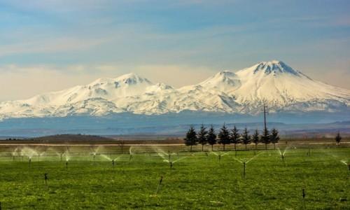 Zdjecie TURCJA / Anatolia / okolice Konii / w drodze