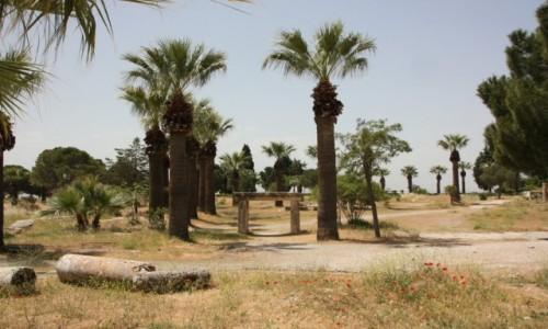Zdjecie TURCJA / Anatolia / Hierapolis / Hierapolis 4