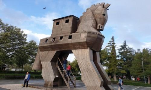 Zdjecie TURCJA / Zachód Kraju / Turcja / Koń Trojański - TROJA