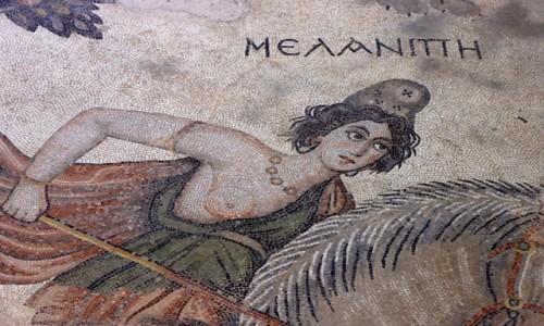 Zdjęcie TURCJA / płd.-wsch. Anatolia / Sanliurfa / Mozaika w muzeum w Sanliurfie