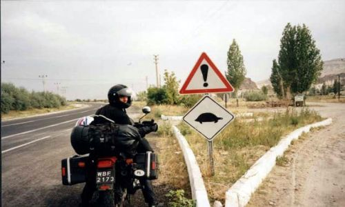 TURCJA / brak / Kapadocja / Uwaga żółwie na drodze!!!