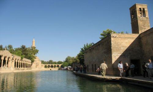 Zdjęcie TURCJA / Mezopotamia / SAnli Urfa / święta sadzawka