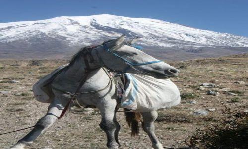 TURCJA / Dogubayazit / Ararat / Po drodze na Ararat