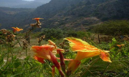 Zdjęcie TURCJA / zachodnia część wybrzeża Morza Śródziemnego / Dolina Motyli / Dolina Motyli... niedaleko Oludeniz, Oludeniz niedaleko Fethiye
