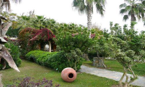 Zdjęcie TURCJA / Antalia / Evrenseki / Turecki ogród