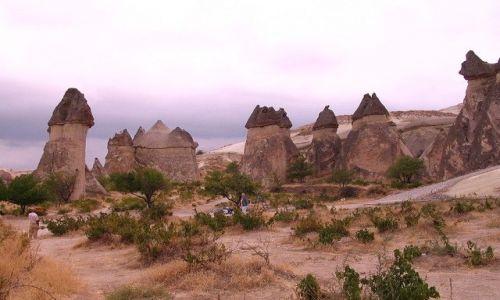 Zdjęcie TURCJA / Anatolia Turecka / Kapadocja /