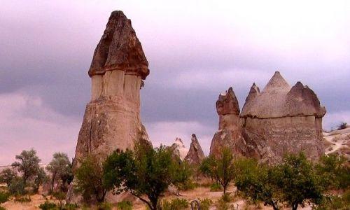 Zdjęcie TURCJA / Anatolia Turecka / Kapadocja /  grzybki