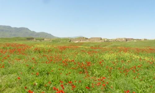 Zdjecie TURKMENISTAN / Ashgabat / Nusay / Maki