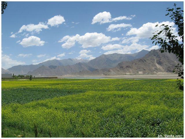 Zdj�cia: okol.Shigatse, Himalaje, Z cyklu Zielone pola Tybetu, TYBET