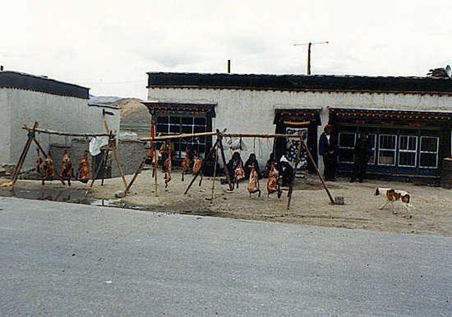Zdjęcia: Lhasa, osada w drodze z Xigaze do granicy z Nepalem, TYBET