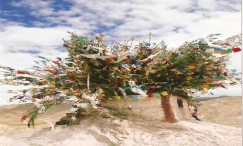 Zdjecie TYBET / Tybetański Region Autonomiczny / Gyantse / Maszt
