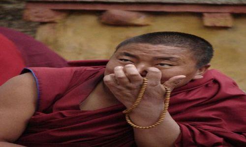 Zdjecie TYBET / brak / Lhasa - Sera Monastery / ma coś z tygrysa nieprawdaż?