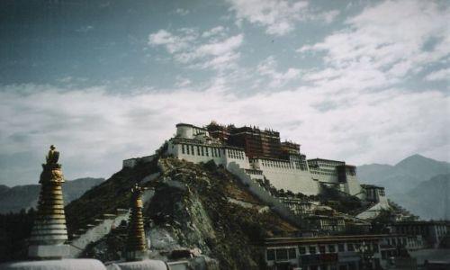 Zdjecie TYBET / Tybet / Lhasa / Pałac Potala